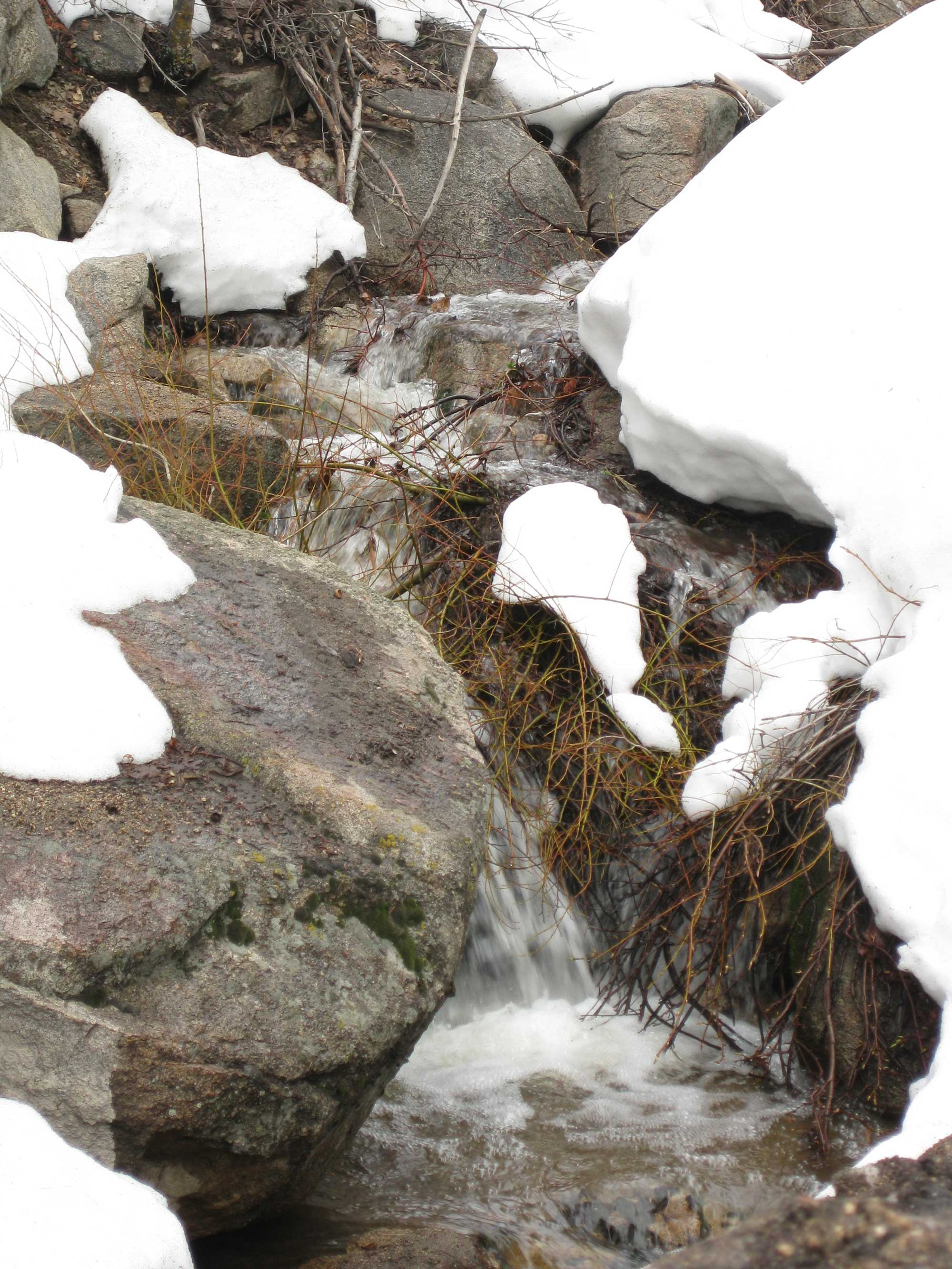 Snow-Water-RS